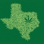 texas-regional-norml-conference-icon